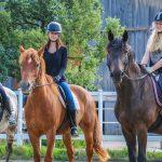 Конные прогулки – лучший отдых для любителей животных